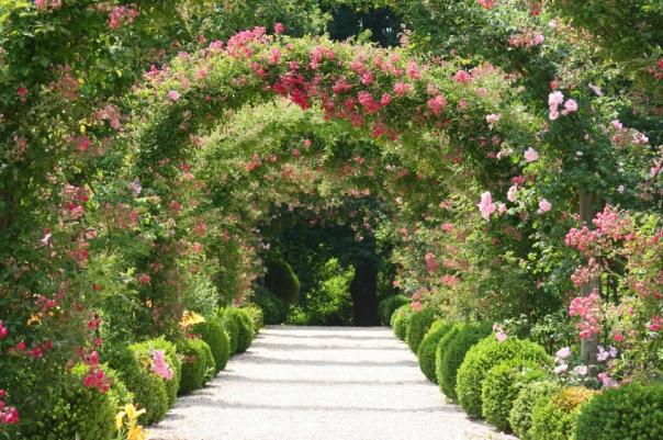 Blog_183_Mom Deserves a Garden of Flowers this Week